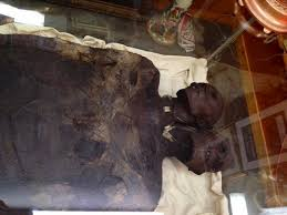 Find a giant mummy with a length of 3.5 meters