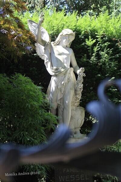 alter Friedhof Bonn Engel / eigene kleine Welt