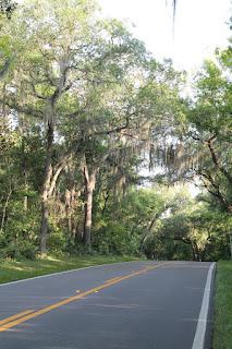 Fatio Road