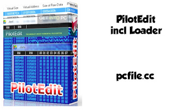 PilotEdit 14.1.0 x86 x64 incl Loader Free Download