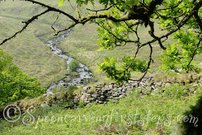 river-erme.dartmoor