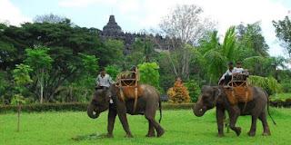 akcayatour, Travel Malang Magelang, Candi Borobudur, Travel Magelang Malang