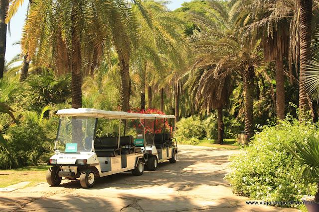 Carrinhos que fazem o transporte interno de visitantes