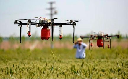Emprendimiento venezolano AgroCognitive es reconocido en el mundo