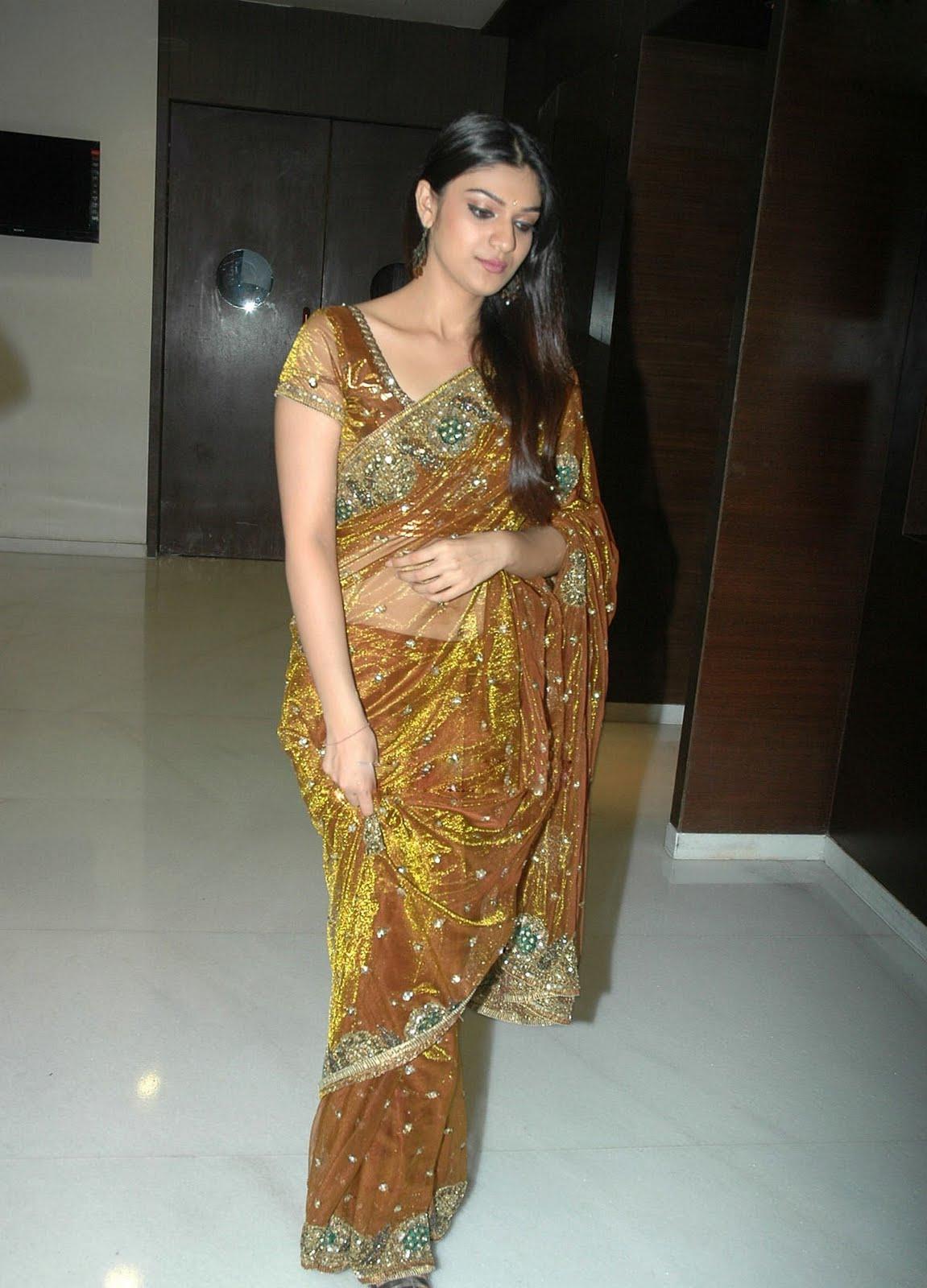 ethnic decorative Shiya latest saree stills