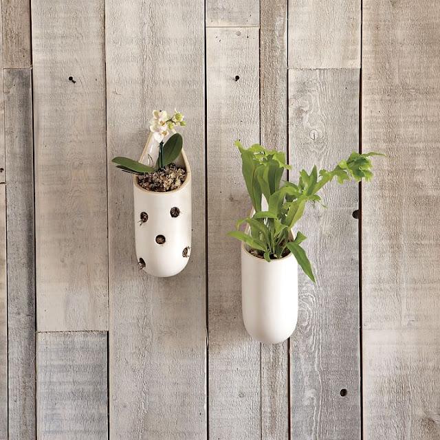 Wall Planters Dari Bahan Keramik