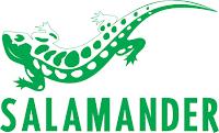 Stock Salamander à Strasbourg