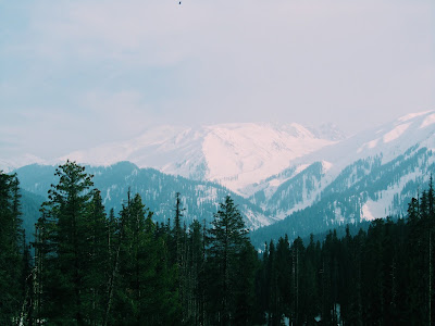 holiday package to Kashmir