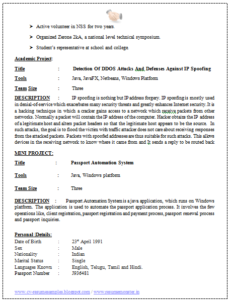 Professional cv for software engineers platinum class for Sample resume for software engineer with 1 year experience