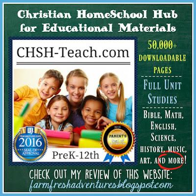 CHSH-Teach.com ~A Review
