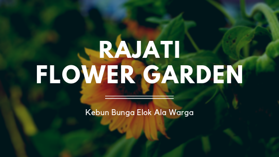Rajati Flower Garden, Kebun Bunga Elok Ala Warga