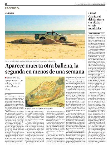 Noticias de aracena y la sierra en los medios resumen de for Caja rural del sur oficinas