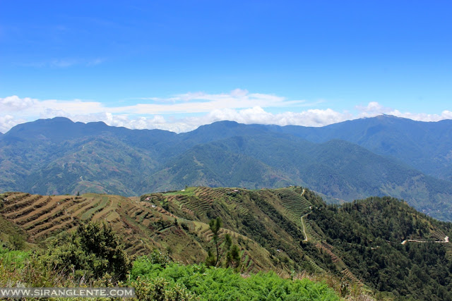 Mt. Timbak trail