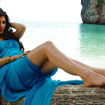 Shruthi Hassan from 7th Sense in Blue Dresss Photo Gallery