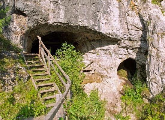 Sekuen Genom Homo neanderthalensis