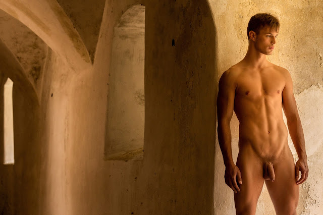 BelAmiOnline - ART COLLECTION: Hoyt Kogan