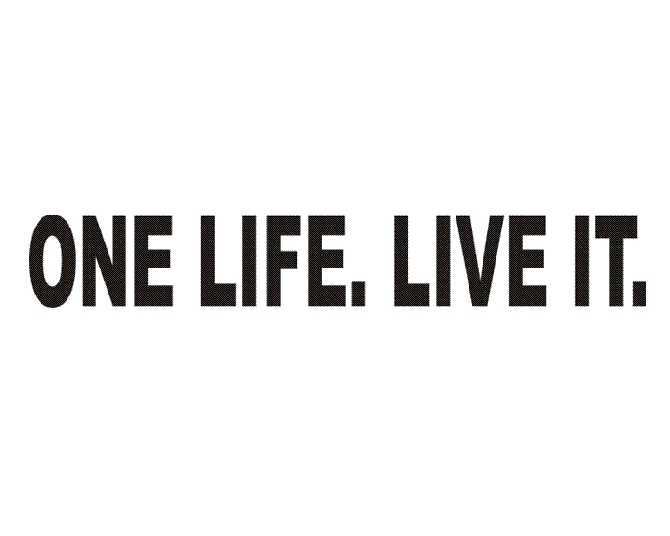 Only One Life Quotes. QuotesGram