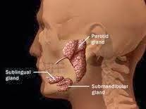 Obat Penyakit Tumor Rahang