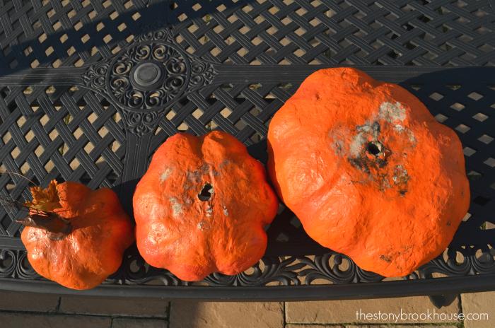 Moldy pumpkins