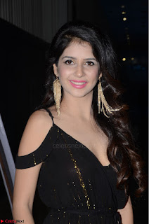 Kashish Vohra at Rogue Movie Audio Launch ~  (3).JPG