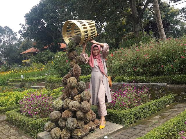 Spot Foto Durian Runtuh Bhakti Alam Pasuruan