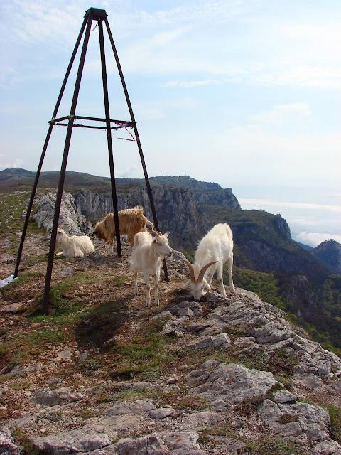Высокие горы Украины. Вершина горы Ат-Баш