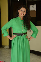 Geethanjali in Green Dress at Mixture Potlam Movie Pressmeet March 2017 082.JPG