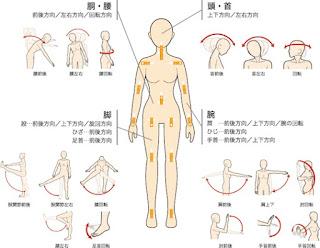 ilustrasi betapa fleksibelnya tubuh boneka