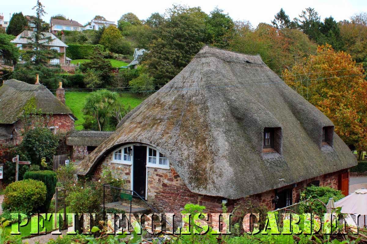 Petit English Garden By Marple Amp Poirot Marple Went Home