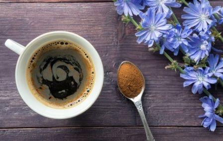 A gyógyító cikória - nem csak kávé pótló