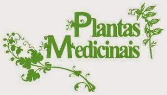 Plantas Medicinais1