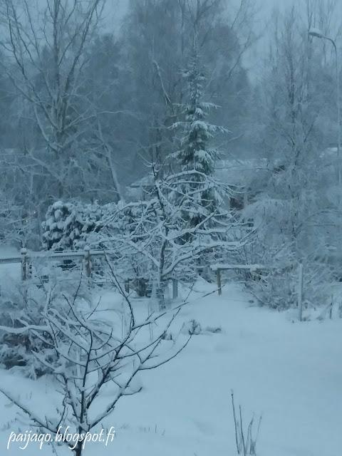 pihan lumimaisema