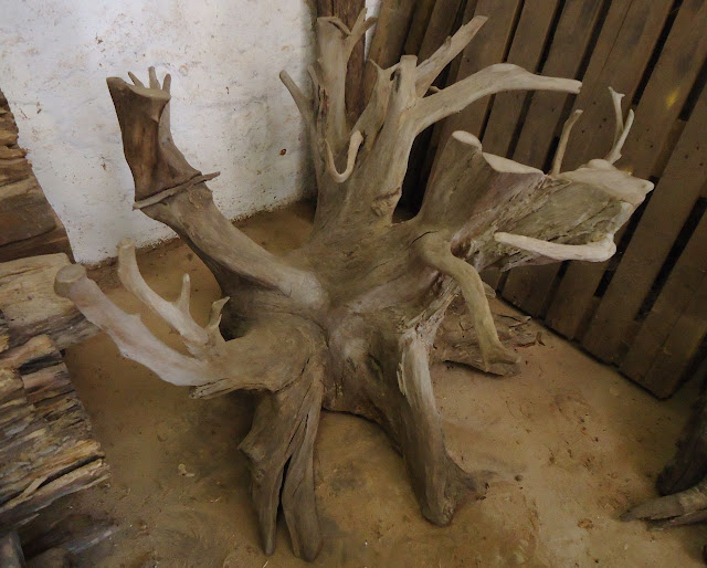 tree root table bases