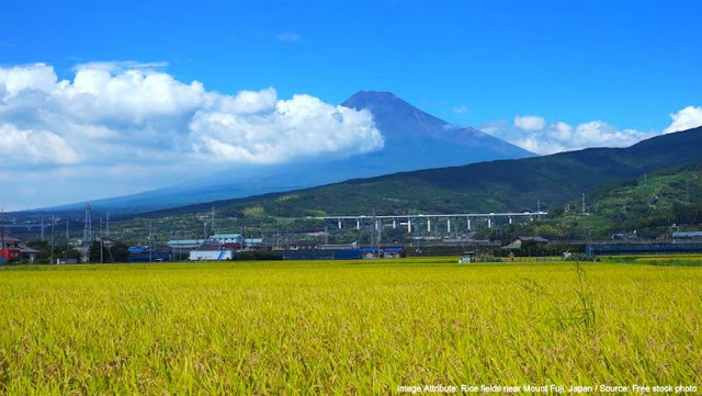 Image Attribute: Rice fields near Mount Fuji, Japan / Source: Free stock photos