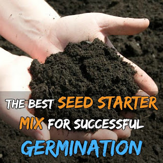 I used this for the first time last year and will continue to use it in the future for starting all of my flowers and veg. It have great germination success rate.