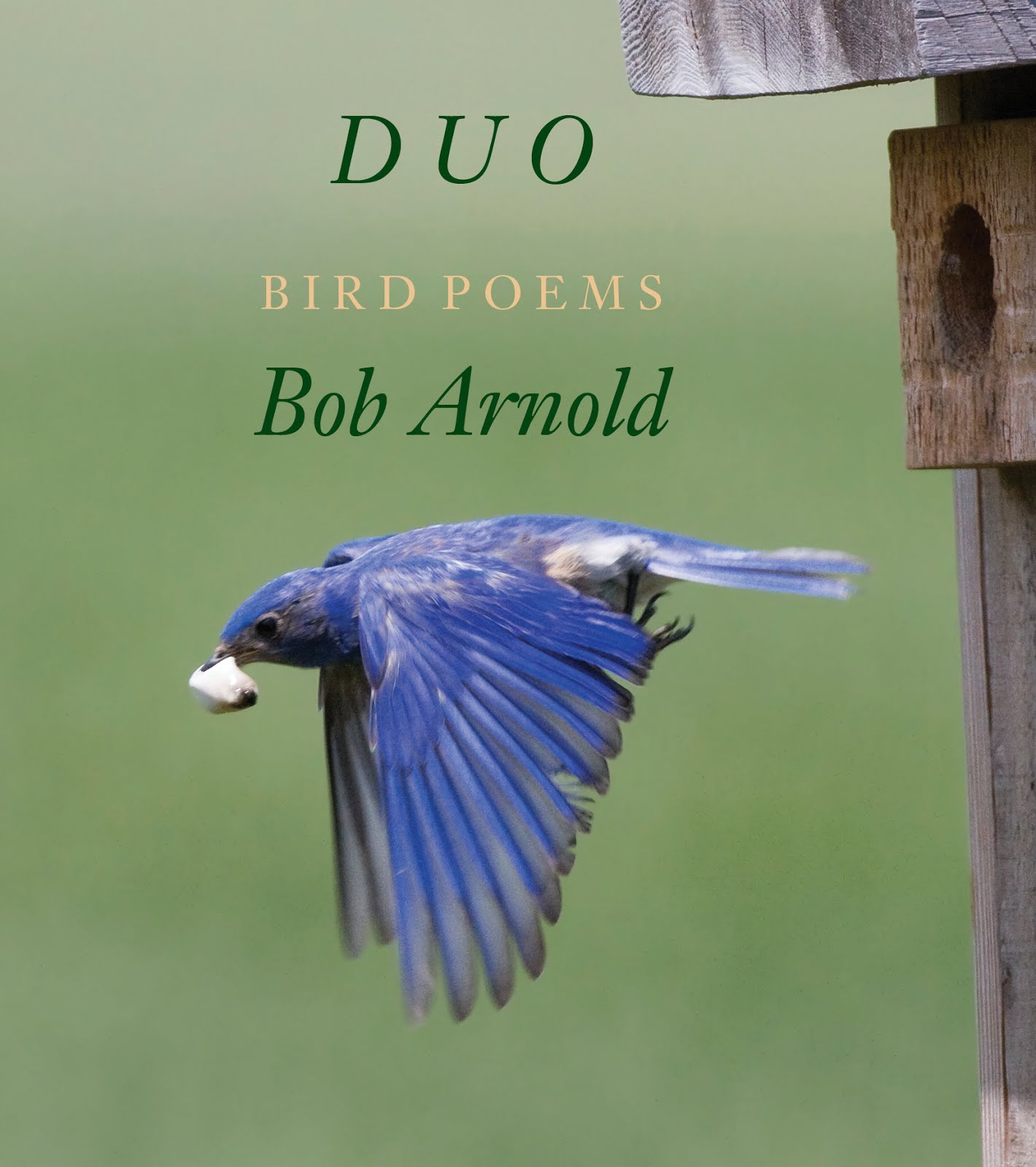 Duo by Bob Arnold — New from Longhouse   Please link to A Longhouse Birdhouse for more information