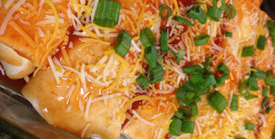 http://www.nebraskabison.com/pages/buffalo-bison-enchiladas-recipe