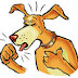 Από πού προέρχεται ο βήχας των σκύλων;...