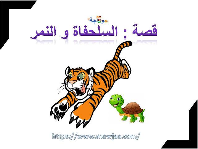 قصة : السلحفاة و النمر