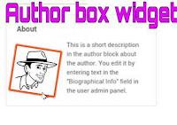Tổng hợp hộp tác giả-author box widget cho blogspot