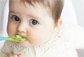 6 Benefits of Avocados for Healthy Babies - Healthy T1ps