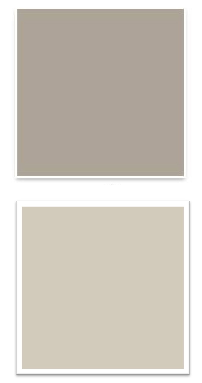 The Pillows Tie Neutral Tan Wall Colors We Recommended Balanced Beige And Agreeable Gray In With Furniture Navy Blue Accents Used