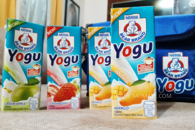 yogurt milk drink, Bear Brand Yogu