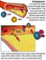 Tips Sehat Menurunkan Kolesterol