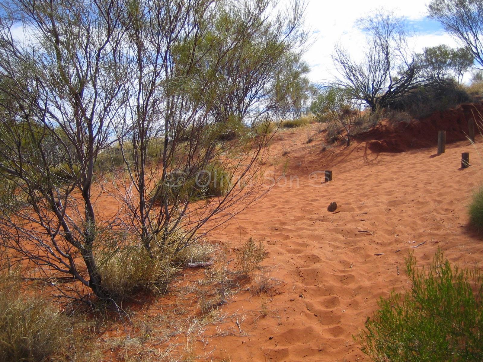 Red Dust, Australie