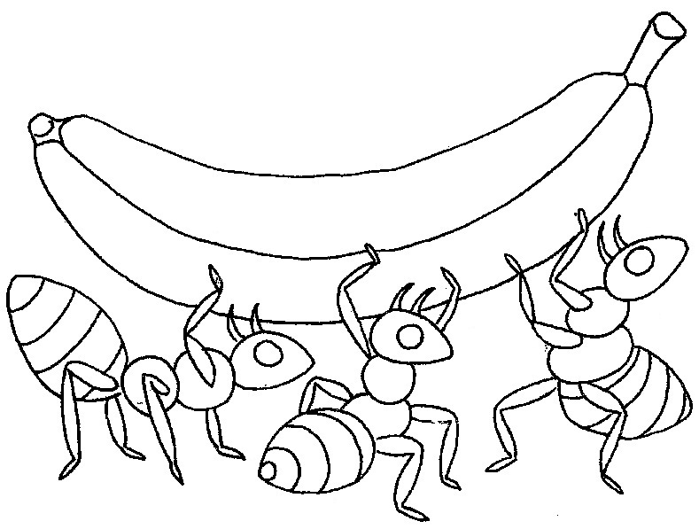 Printable Ant Colony Coloring Pages For Kids Free