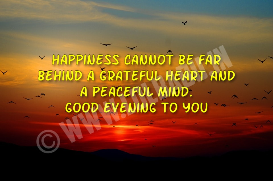 Best Good Evening Wishes Messages Quotes 2019 Lolbabuin