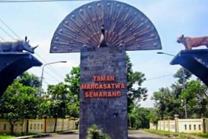 11 Foto Bonbin Mangkang Semarang, Harga Tiket Masuk + Lokasi Kebun Binatang, Margasatwa Kota Semarang