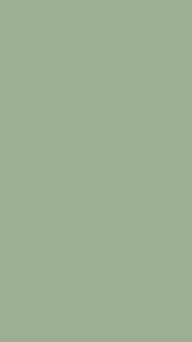 Muted Green Wallpaper For Iphone Solid Color