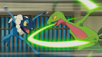 Frogadier vs Grovyle